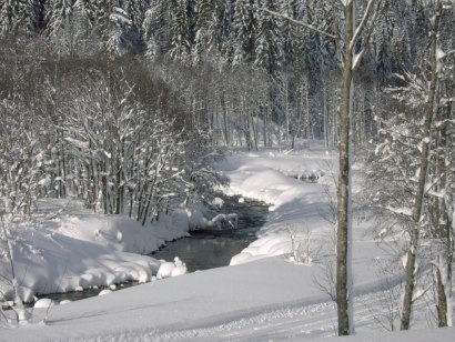 Winterwandern am Bolgenachweg