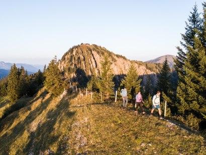 Blick über die Alpen, © Tourismus Hörnerdörfer, F. Kjer