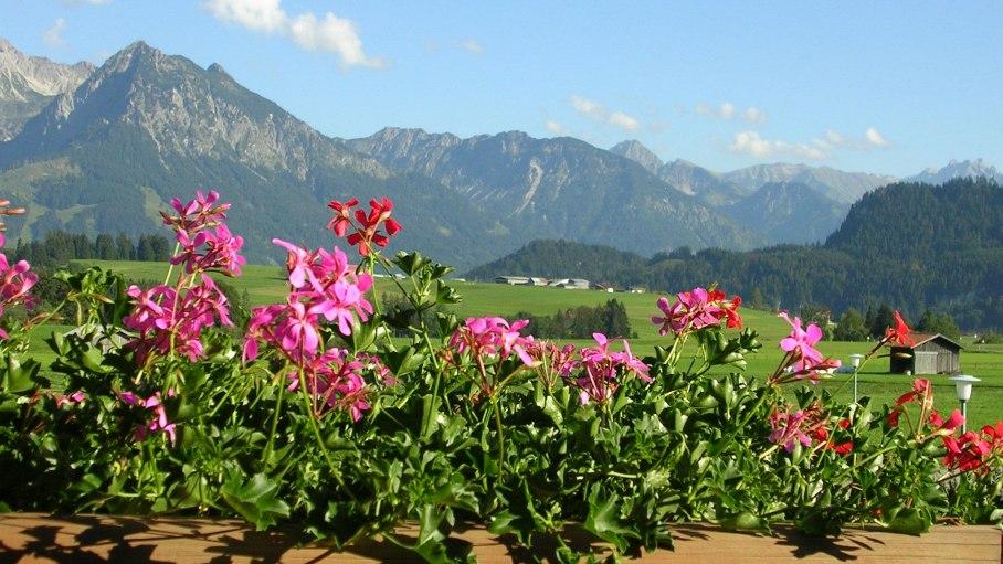 Allgäuer Bergblick, © Haus Alpensonne - Bolsterlang
