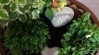 Willkommen, © Haus Alpensonne - Bolsterlang