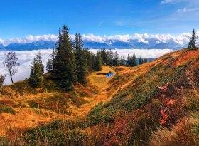 Herbstliche Moorlandschaft am Wannenkopf bei Obermaiselstein im Allgäu - Naturpark Nagelfluhkette, © Tourismus Hörnerdörfer, R. Schöllhorn