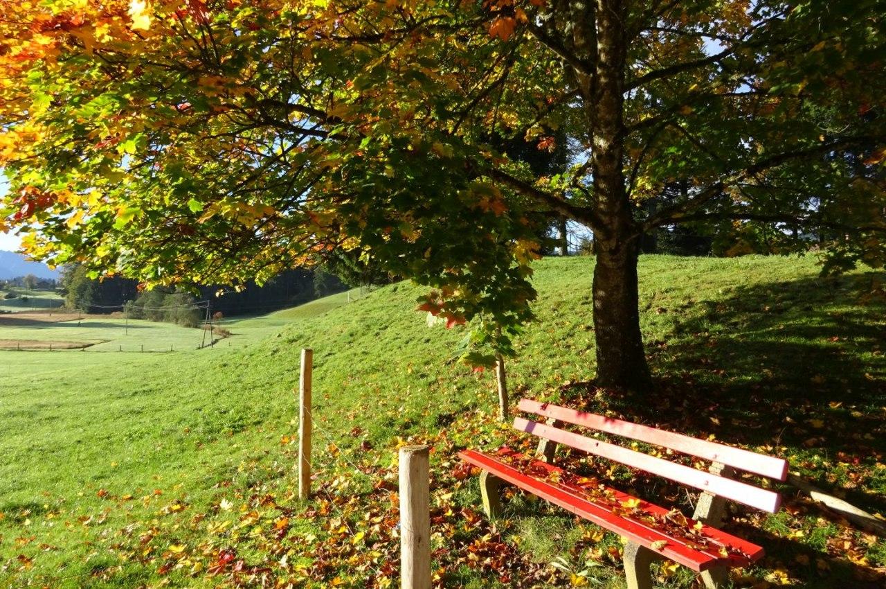 Herbst in Bolsterlang im Allgäu, © Tourismus Hörnerdörfer, Gästeinformation Bolsterlang