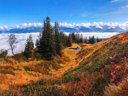 Herbstliche Moorlandschaft am Wannenkopf