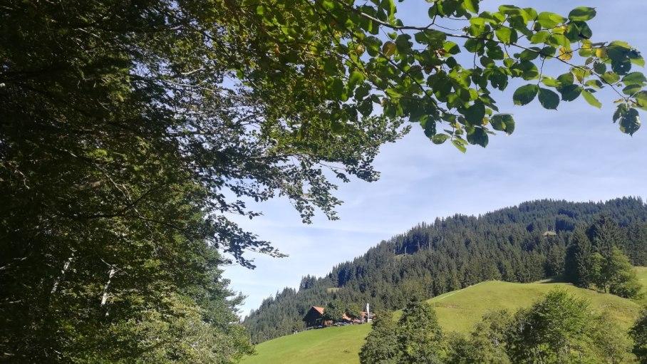 Blick auf den Alpen-Gasthof Gaisalpe